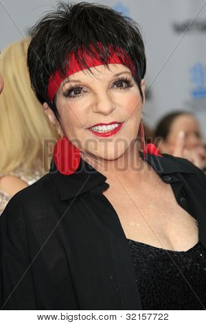 LOS ANGELES - APR 12:  Liza Minnelli arrives at the TCM 40th Anniv of