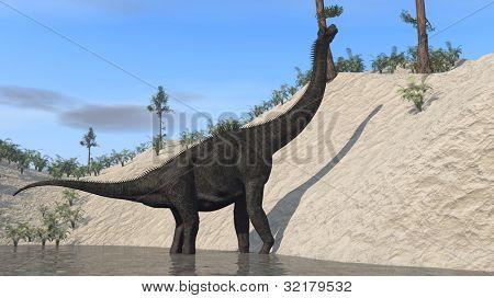 brachiosaurus on bank