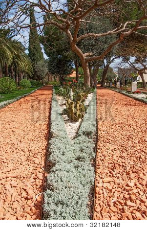 Ideally Direct Avenue  In Baha'i Park In Israel