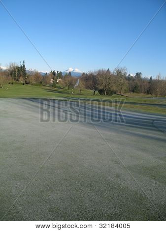 Frost on Greens