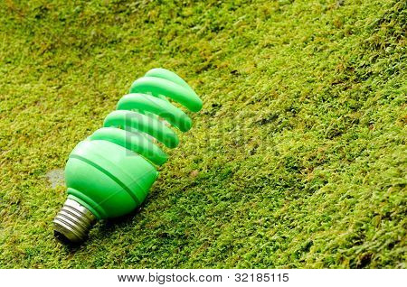 Green spiral light bulb