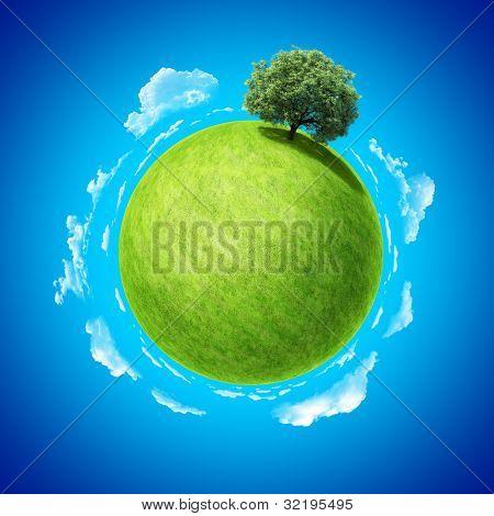 Concepto de mini planeta. Espacio vacío en campo verde fresco y árbol denso permanente único. Lugar para su t