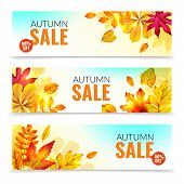 Banners With Fall Leaves. Autumn Season Discount Offers With Red And Orange Realistic Foliage. Color poster