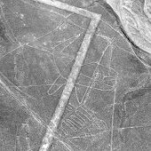 Whale Geoglyph, Nazca Mysterious Lines And Geoglyphs Aerial View, Landmark In Peru, Black And White poster
