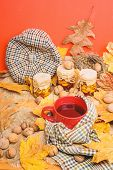 Fall Season To Do List Concept. Mug Cozy Aromatic Tea Beverage In Scarf And Treats. Mug Of Tea Surro poster