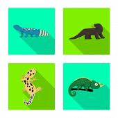 Vector Illustration Of Tail And Fauna Logo. Collection Of Tail And Environment Vector Icon For Stock poster