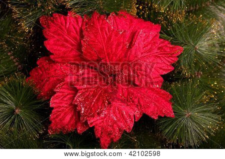 Christmas ornaments hanging on the Christmas tree