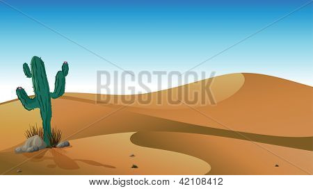 Illustration of a cactus in the desert