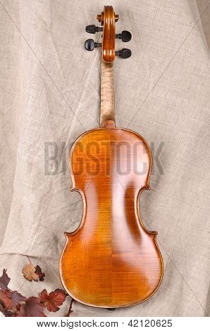 Violin Back View Isolated On Beige Background