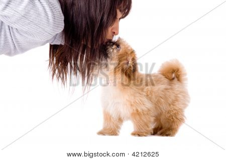 Smelling Puppy