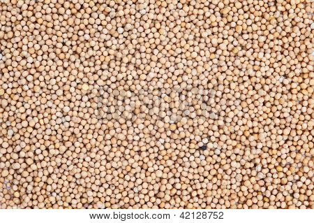 Mustard Seeds Background
