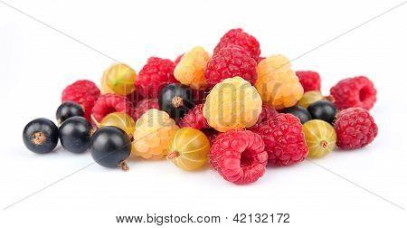 Ripe Berries Closeup