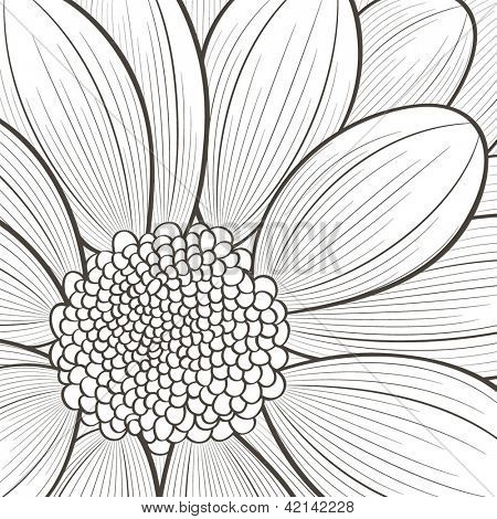Hand-drawn floral  background. Vector flower chrysanthemum. Element for design.