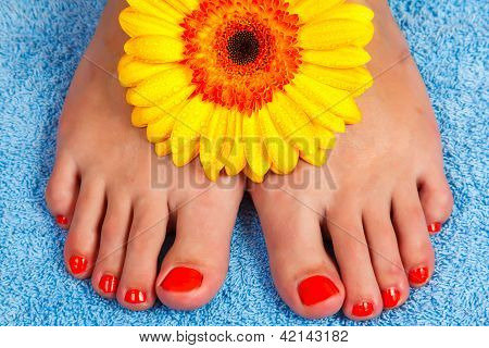 pedicure on foot