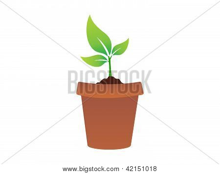 Abstract Plant Icon
