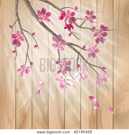 Spring Cherry Blossom Flowers On A Wood Texture