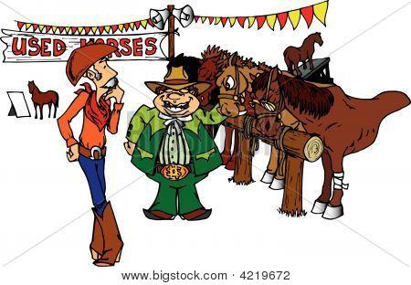 Used Horses