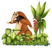 stock photo of ant-eater  - Illustration of an anteater with plants - JPG