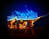 image of absinthe  - Image of three glasses of burning yellow absinthe - JPG