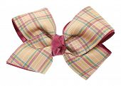 foto of bow tie hair  - Beige plaid ribbon bow - JPG
