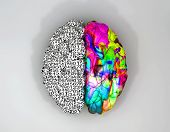 stock photo of comparison  - A typical brain with the left side depicting an analytical structured and logical mind and the right side depicting a scattered creative and colorful side on an isolated background - JPG