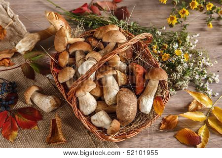 Still life. Flowers, mushrooms