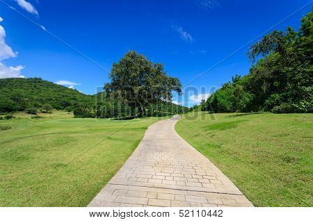 Landscpe With Pathway And Blue Sky