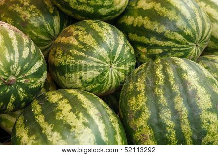 Pile of white-green striped watermelons