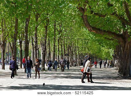 Green Boulevard