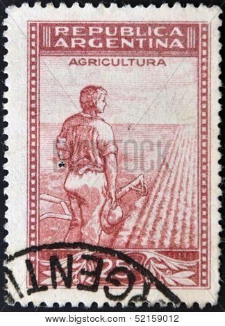 Argentina - Circa 1938: A Stamp Printed In Argentina Dedicated Ti Agriculture, Circa 1938