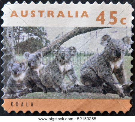 Australia - Circa 1994: Stamp Printed By Australia, Shows Koala Family, Circa 1994