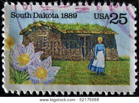 stamp printed in USA shows State Flower Pioneer Woman and Sod House on Grasslands