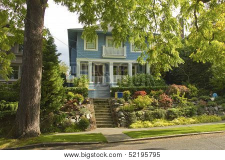 Large Tree And House Residential Area Seattle Wa.