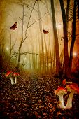 stock photo of faerys  - Red spotted mushrooms in a tale forest - JPG