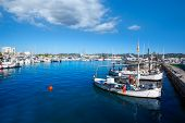 Ibiza san Antonio Abad de Portmany marina port in Balearic Islands of spain
