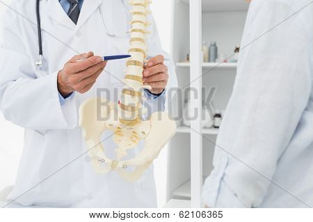 Close-up mid section of a doctor explaining the spine to patient in medical office