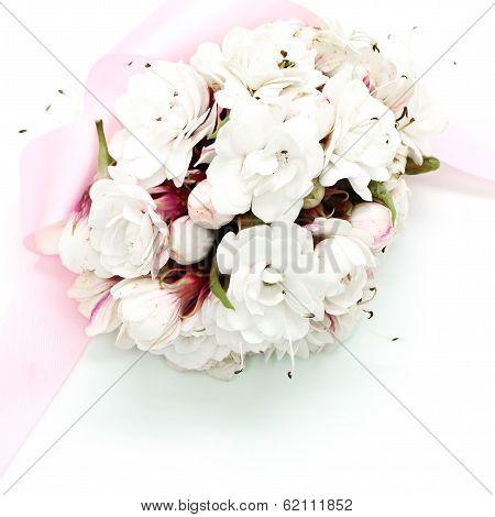 Glory Bower Flower