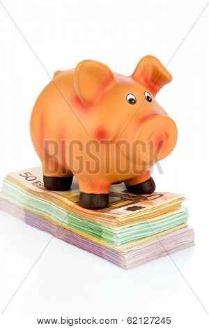 a piggy bank standing on banknotes, symbolic photo for economy, profitability, return on