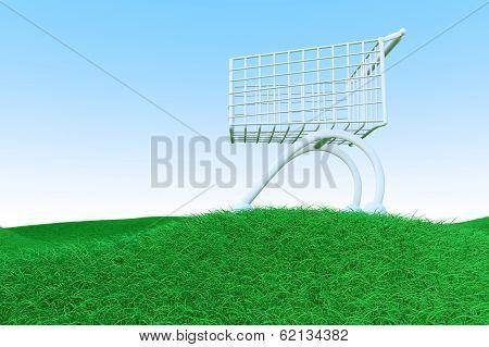 Shopping Cart On Green Hills