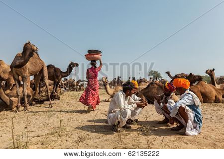PUSHKAR, INDIA - NOVEMBER 20, 2012: Indian people and camels at Pushkar camel fair (Pushkar Mela) - annual five-day camel and livestock fair one of the world largest camel fairs and tourist attraction