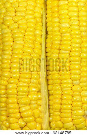 Yellow Sweetcorn Texture