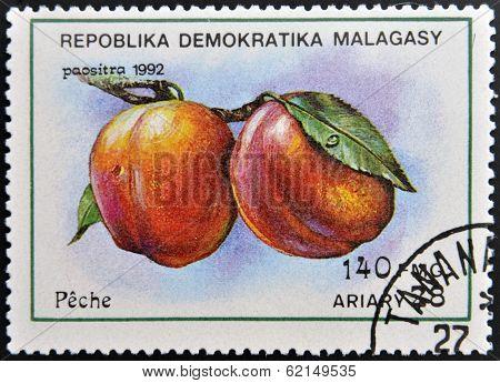 stamp printed in Madagascar shows Peaches Prunus Persica Fruit