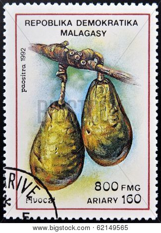 stamp printed in Madagascar shows Avocados Persea Americana Fruit