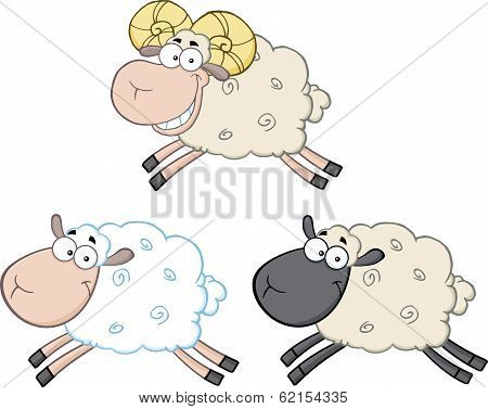 Funny Sheep Cartoon Characters 3  Collection Set