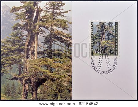 stamp dedicated to the forest in the four seasons shows Weather-beaten Firs in the Valorsch in Summe