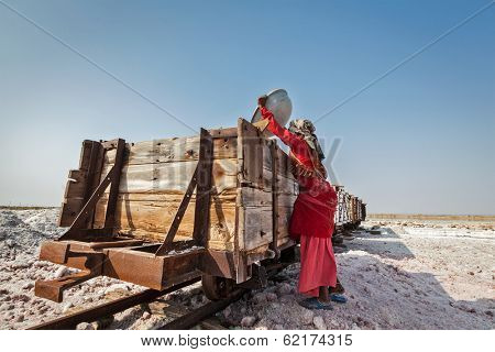 SAMBHAR, INDIA - NOVEMBER 19, 2012: Woman mining salt at lake Sambhar, Rajasthan, India. Sambhar Salt Lake is India's largest inland salt lake