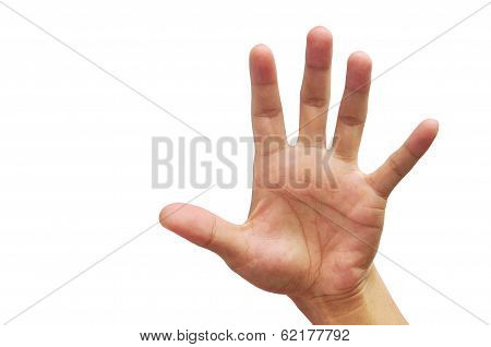 People Hand Male Five