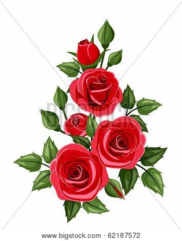 Branch of red roses. Vector illustration.