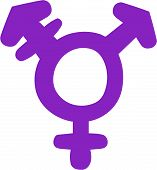 picture of transgender  - Vector illustration of a purple transgender symbol - JPG