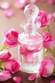 pic of perfume  - perfume bottle and pink rose flowers - JPG